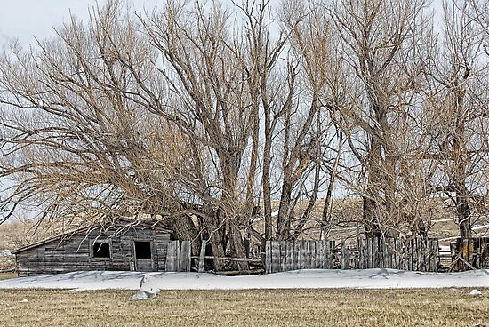 Old House by Melissa  Hintz