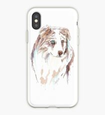 Australischer Hirte iPhone-Hülle & Cover