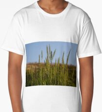 Crops at sunset Long T-Shirt