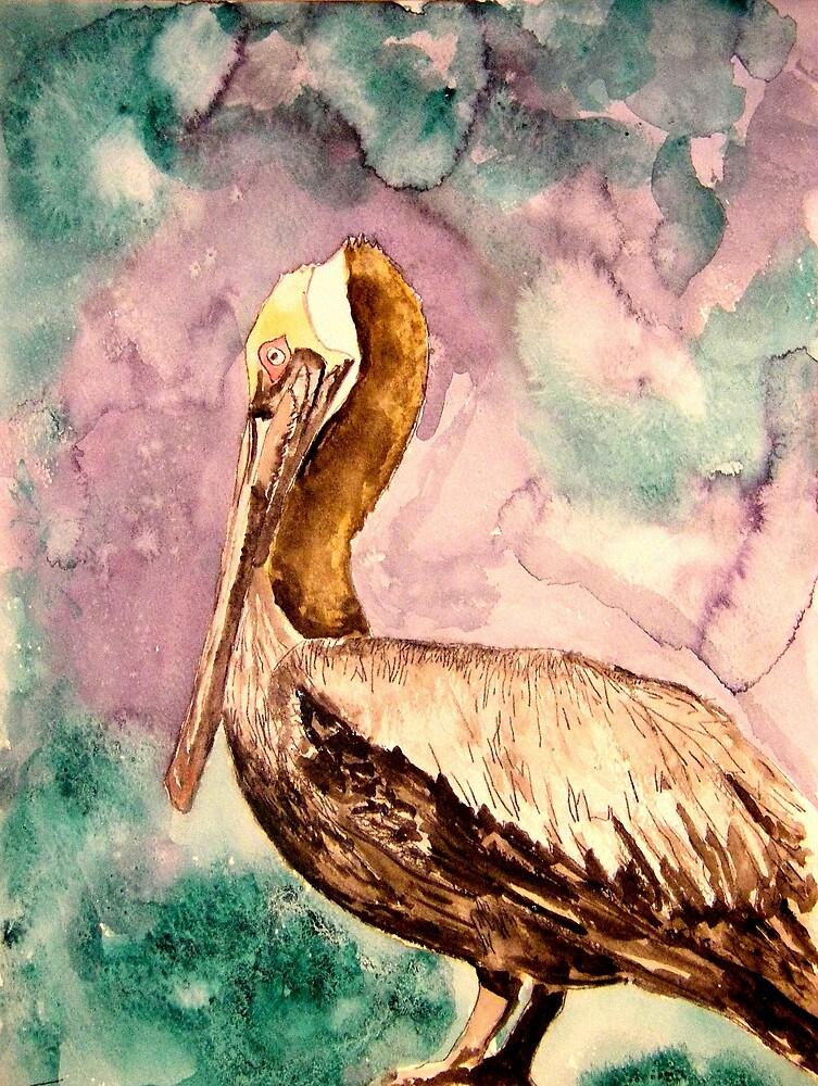 Pelican by derekmccrea