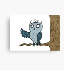 Chilly Night Owl Canvas Print