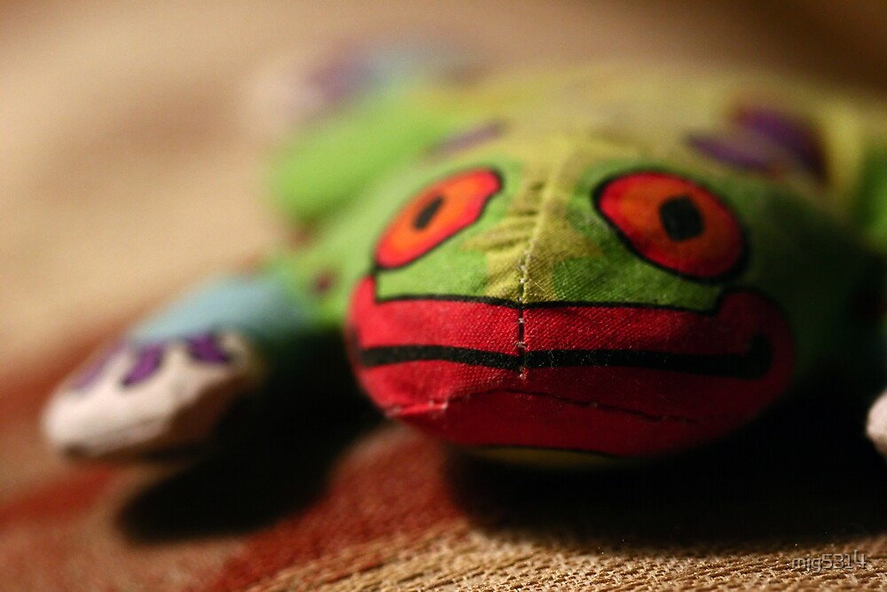 Froggie by mjg5314