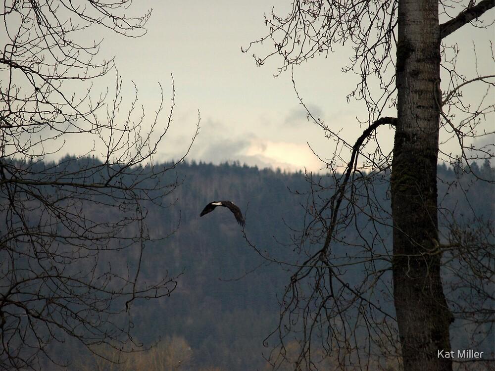 Flight by Kat Miller