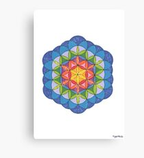 1903 - Colored Flower Design With White Background Canvas Print