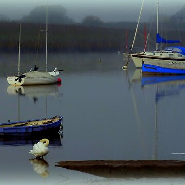 Boats in the Mist by Sita