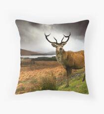 Monarch of the Glen Throw Pillow