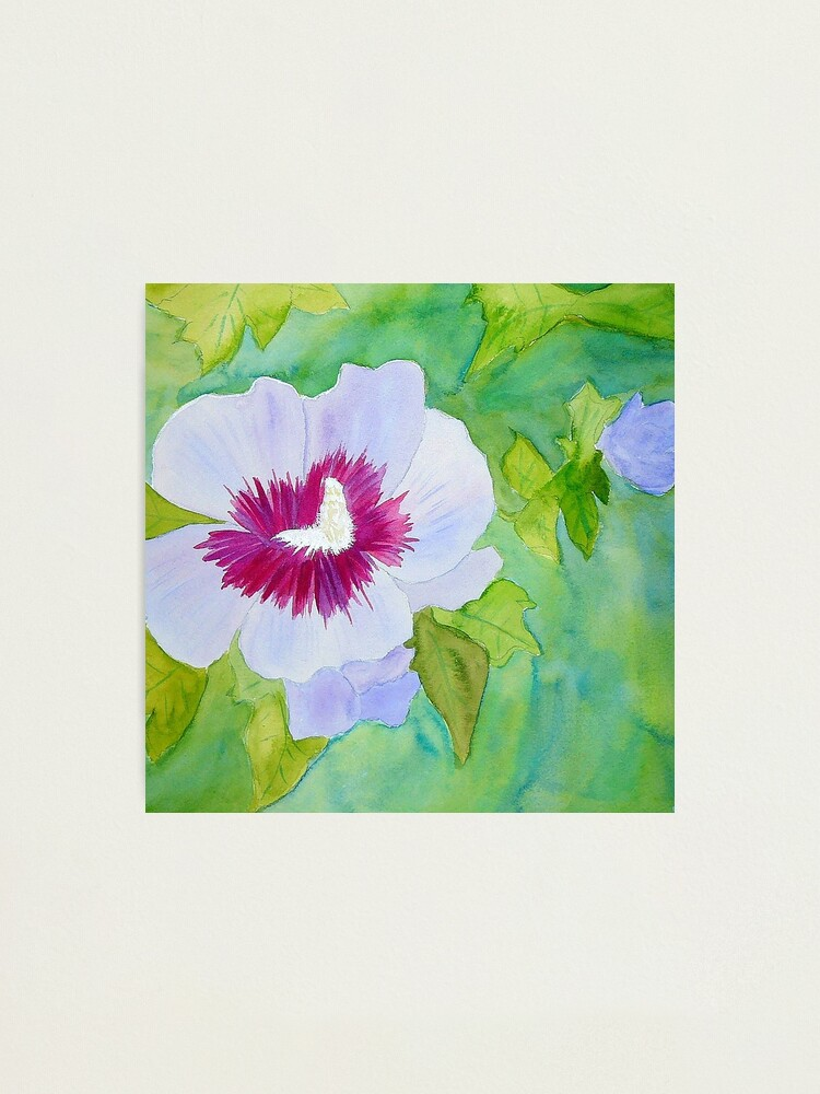 Alternate view of Rose of Sharon Photographic Print