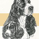 English Springer Spaniel Father & Son by BarbBarcikKeith