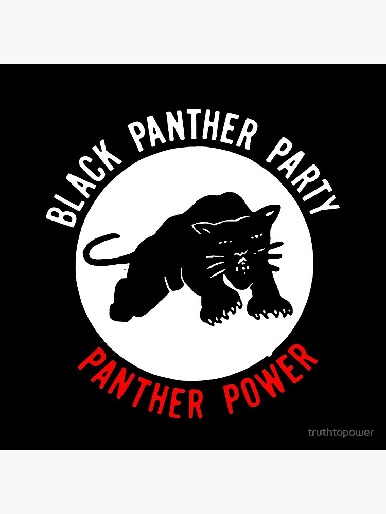 THE BLACK PANTHER PARTY by truthtopower