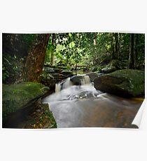 Brisbane Water National Park 3 Poster