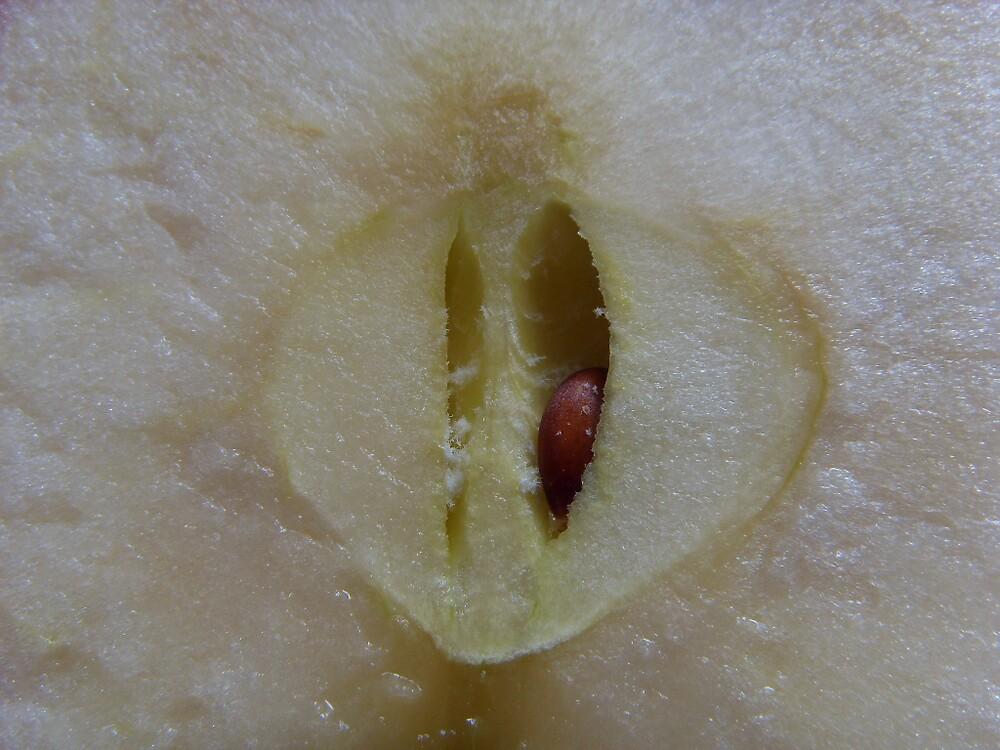 Apple Half by Zoe Chesterman