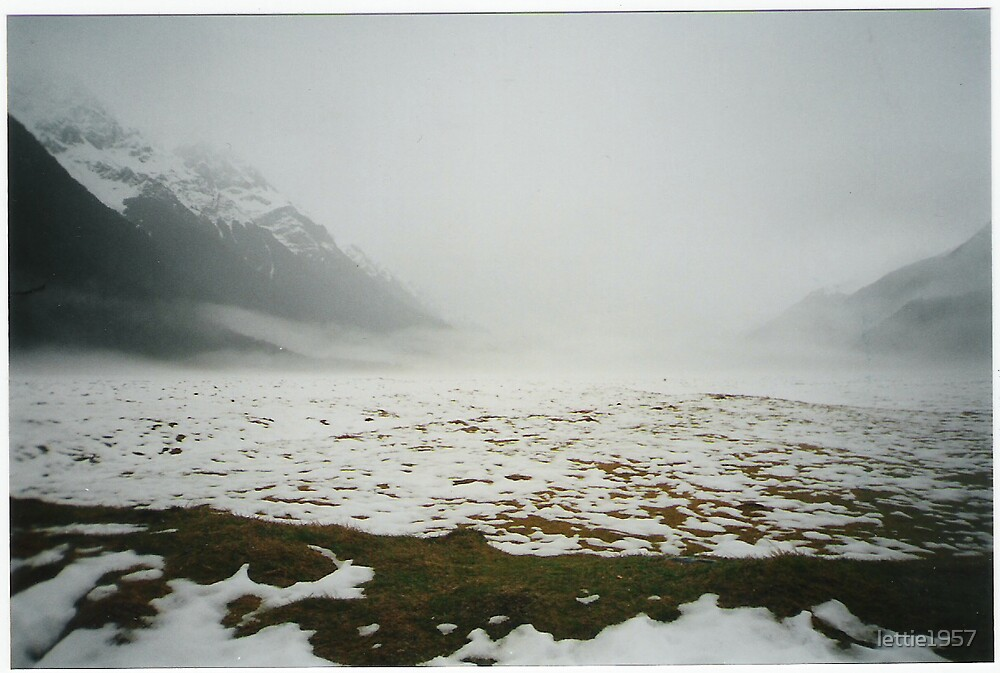 The Divide - on way to Milford Sound by lettie1957
