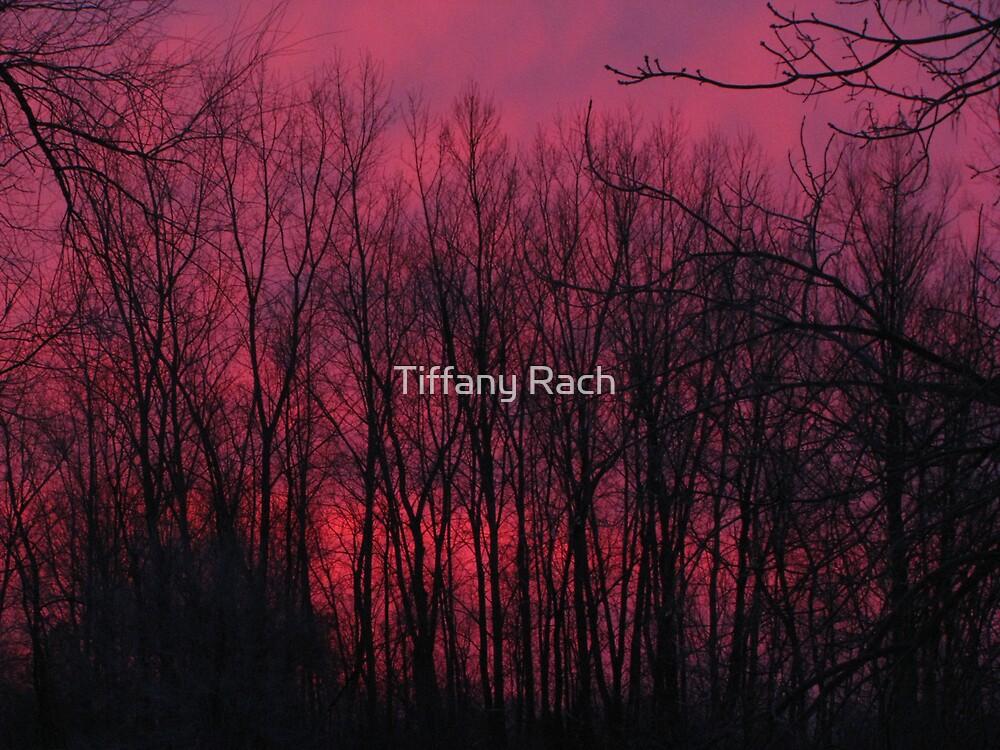 Sky of Fire by Tiffany Rach