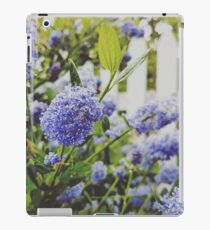 California Lilac  iPad Case/Skin