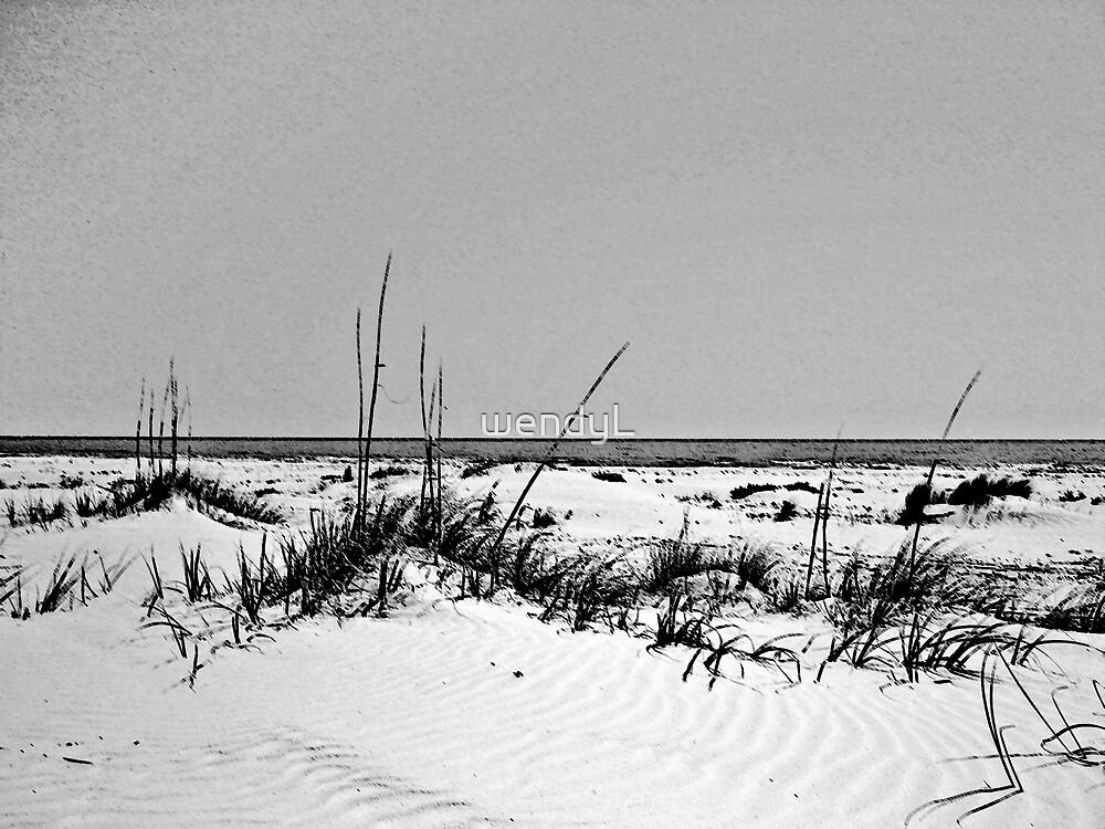 dark stroked beach by wendyL