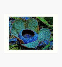 Rafflesia in disguise Art Print
