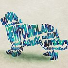 Newfoundland Dog Breed Typographic Watercolor Painting by A Deniz Akerman