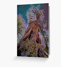 Zermatt pinetree Greeting Card