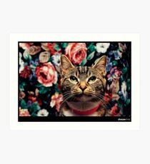 Posing Cat is Posing Art Print