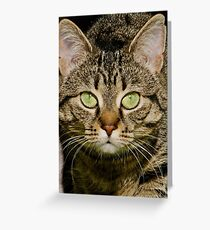 Entice Greeting Card
