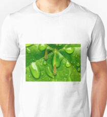 Hoppers in the Rain T-Shirt