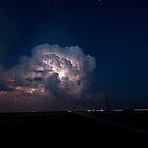 Night Light by Alan Gamble