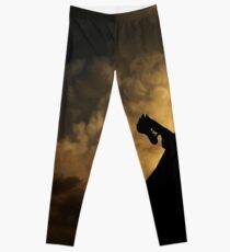Valhalla Storms Leggings