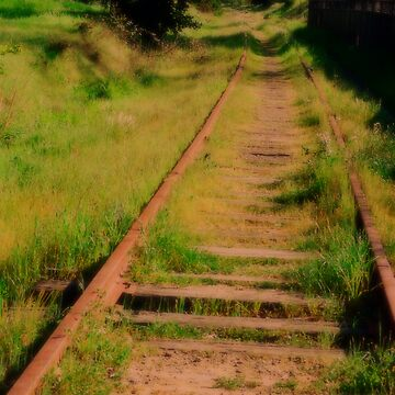 Old Railroad Track by Aslan