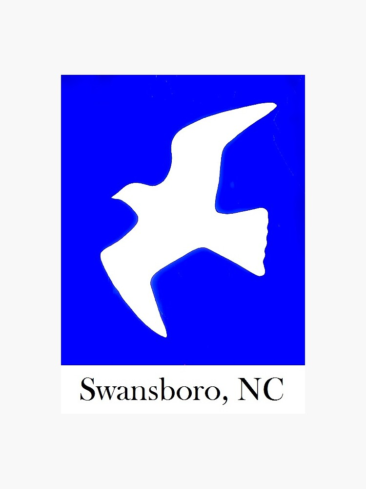 Swansboro NC SeaGull by barryknauff