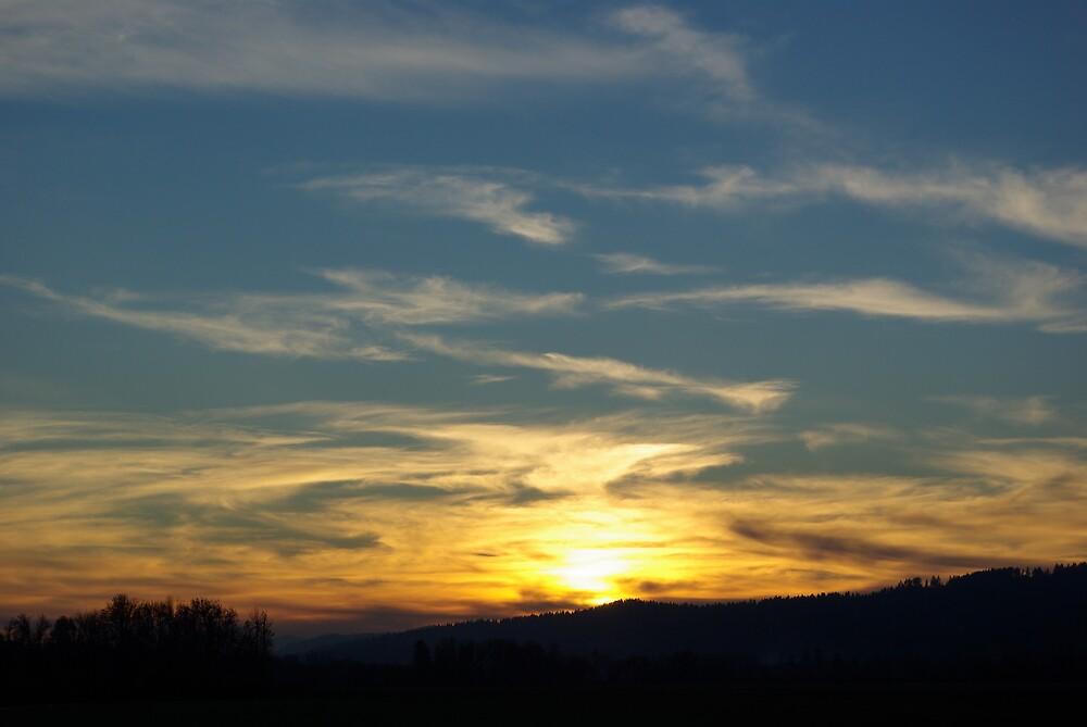 Washington County Sunset by Sharoncr