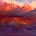 Fire in the Sky by Elaine Teague