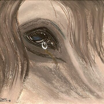 Equine Tears by dawndavies