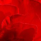 Redder than red by Celeste Mookherjee