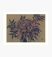 Ash-tree, floral art, olive, taupe & blush Art Print