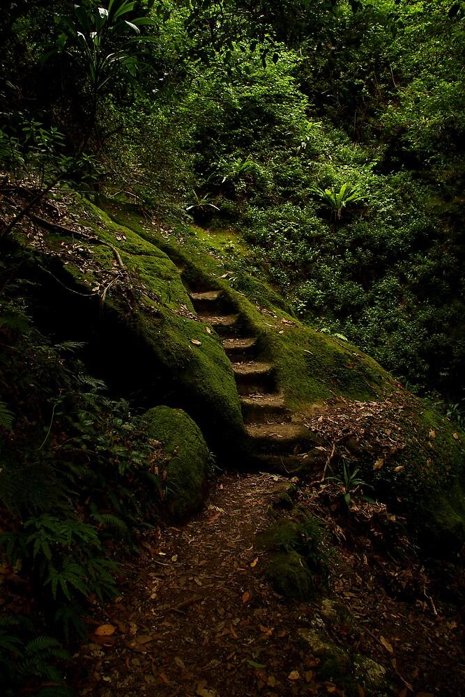 Rock steps by David James
