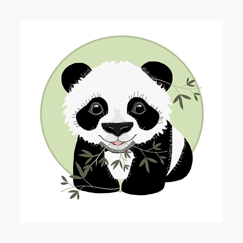 Baby Panda Photographic Print