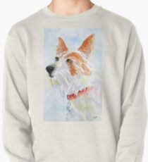Paddy the jack russell terrier Pullover