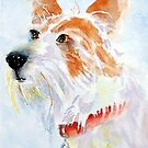 Paddy the jack russell terrier by Pat  Elliott
