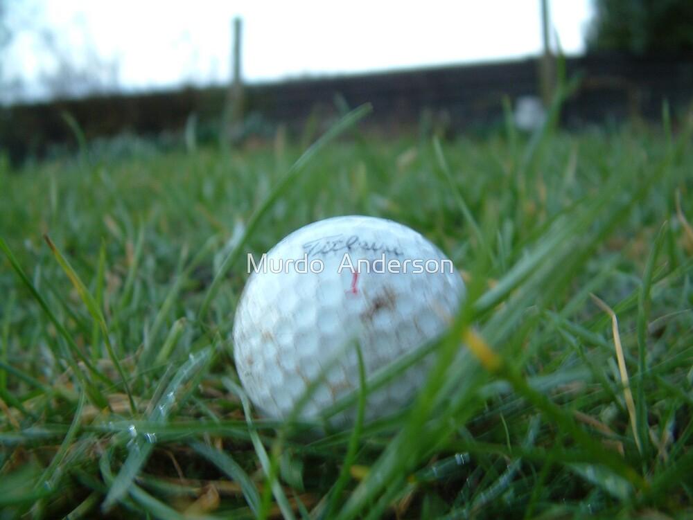Golf Ball 2 by Murdo  Anderson