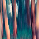 Run through the Trees little Red Cap by Clare Colins