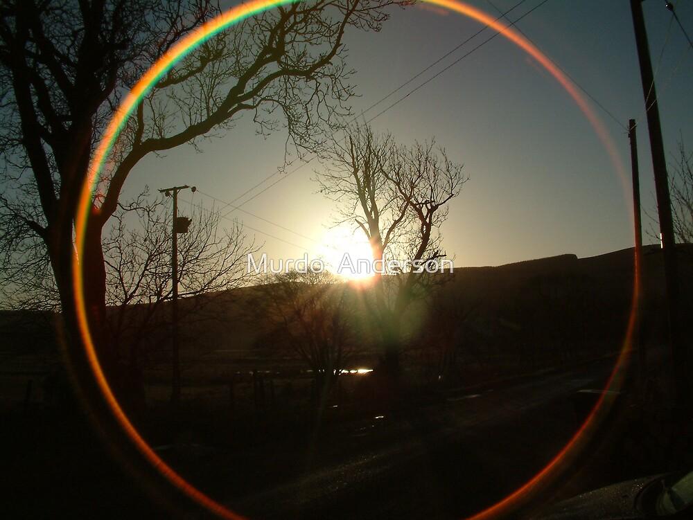 Sun Circle by Murdo  Anderson