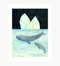 Cool whales on Antarctica Art Print