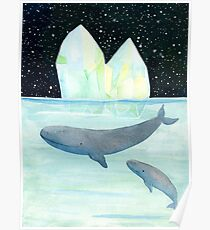 Cool whales on Antarctica Poster