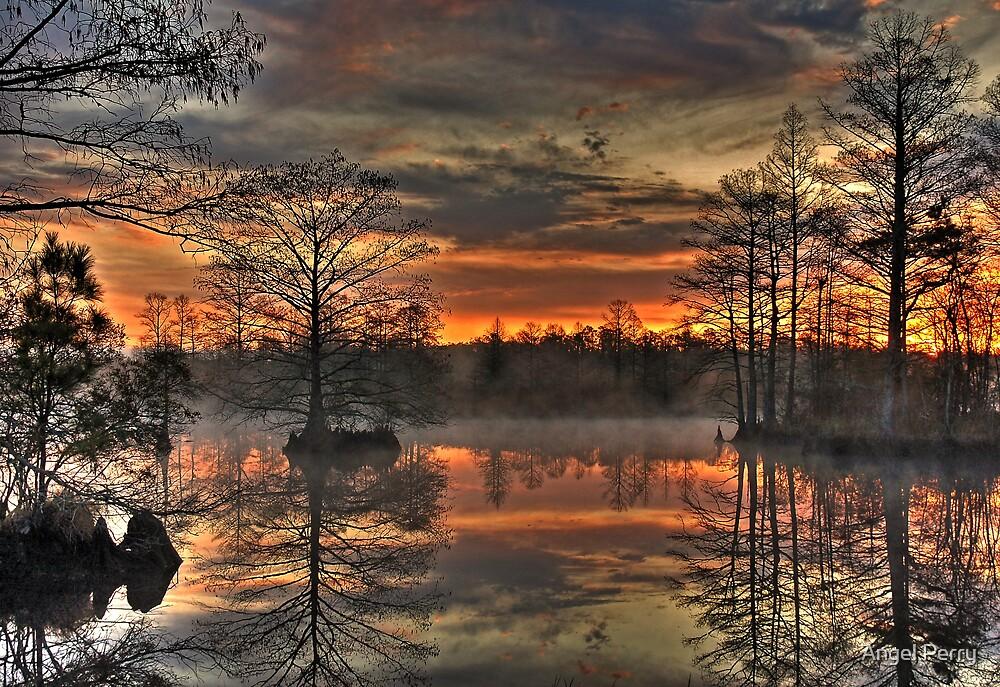 Poyners Creek by Angel Perry
