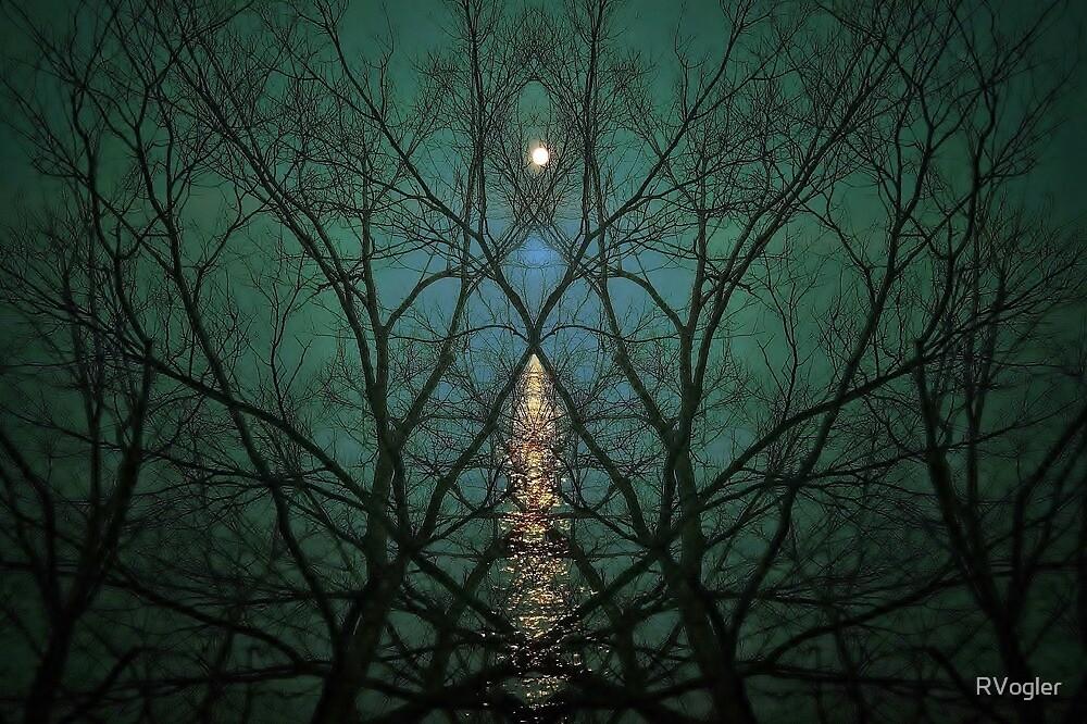 Embrace The Night by RVogler