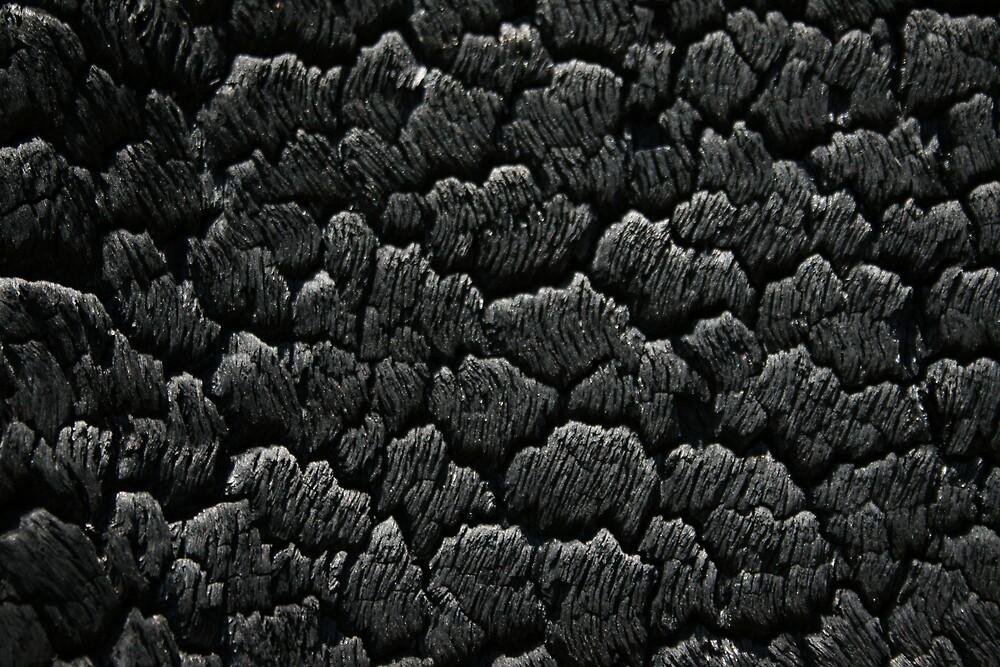 Burnt by Kym Smitt