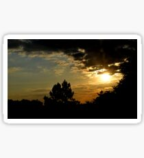 Sunset- Chelmford United Knigdom _ Anglia Rusking University  Sticker