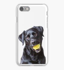 Baxter with ball iPhone Case/Skin