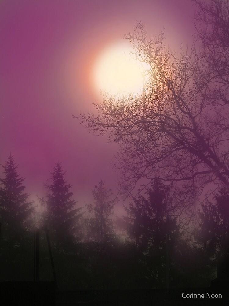 Hazy Purple morning by Corinne Noon