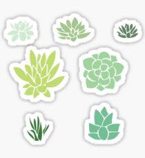 Succulents Pack Sticker